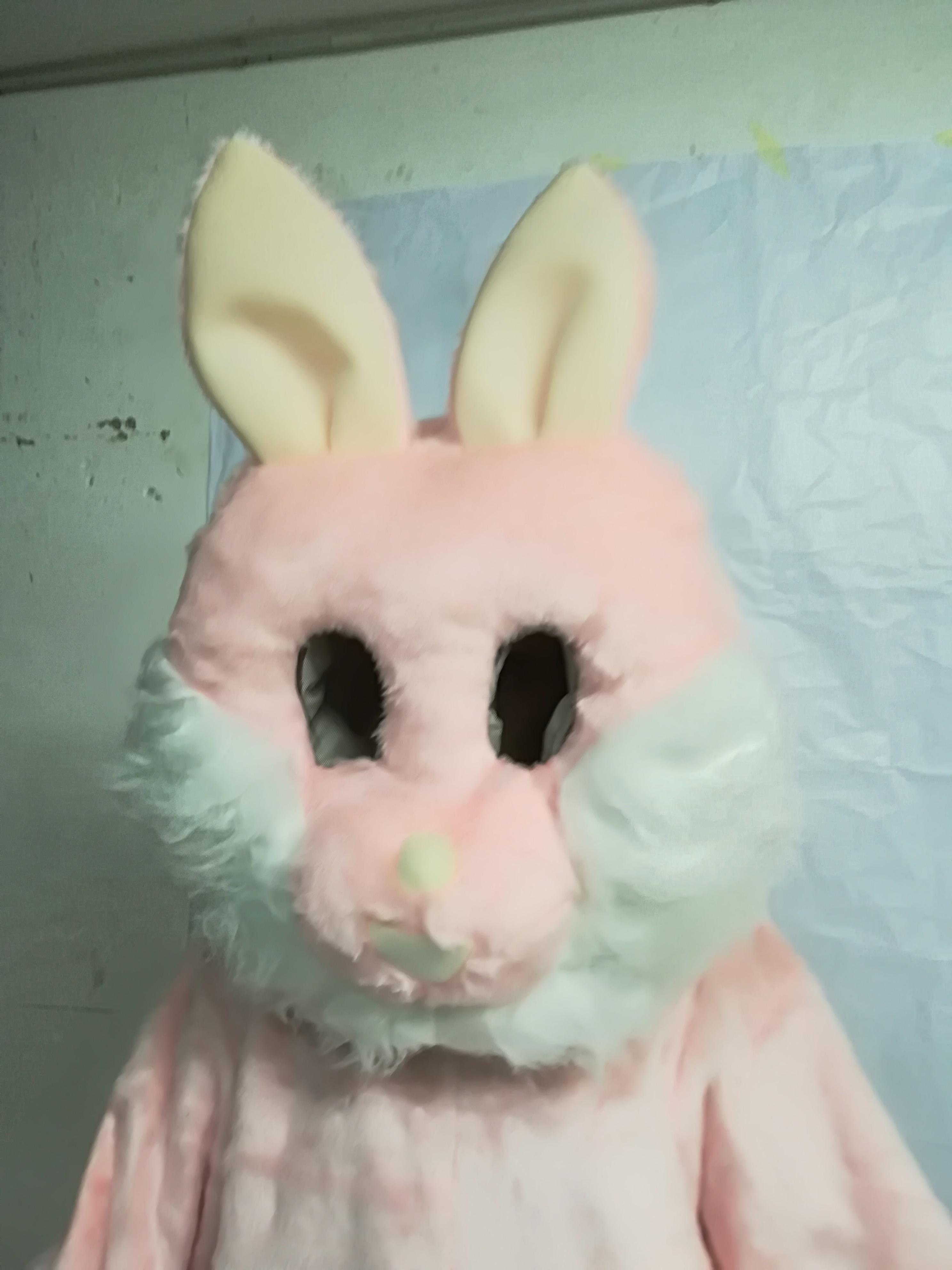 mascotte coniglietta costume e vestiti da mascotte costume e vestiti da mascotteCOSTUMI MASCOTTE ANIMALI